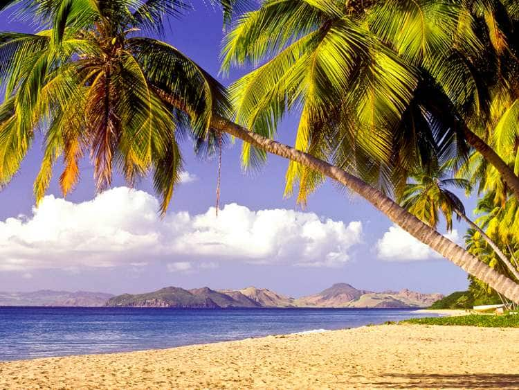 Federation of Saint Kitts and Nevis, Nevis Pinney's Beach Beautiful tropical beach.