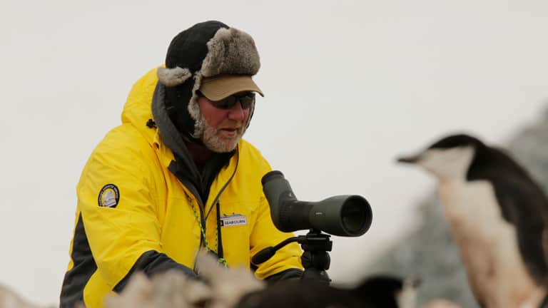 A photo of a Seabourn Ventures Crew in black and gold Arctic gear, viewing a penguin while using a Swarovski Optik optical device.